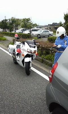 P1000061.JPG